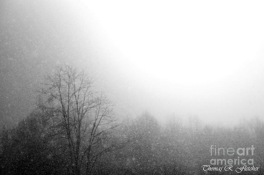 Snowing Photograph - Still by Thomas R Fletcher