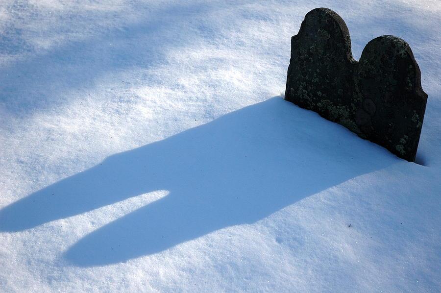 Winter Photograph - Still Together... by Lisa Elizabeth