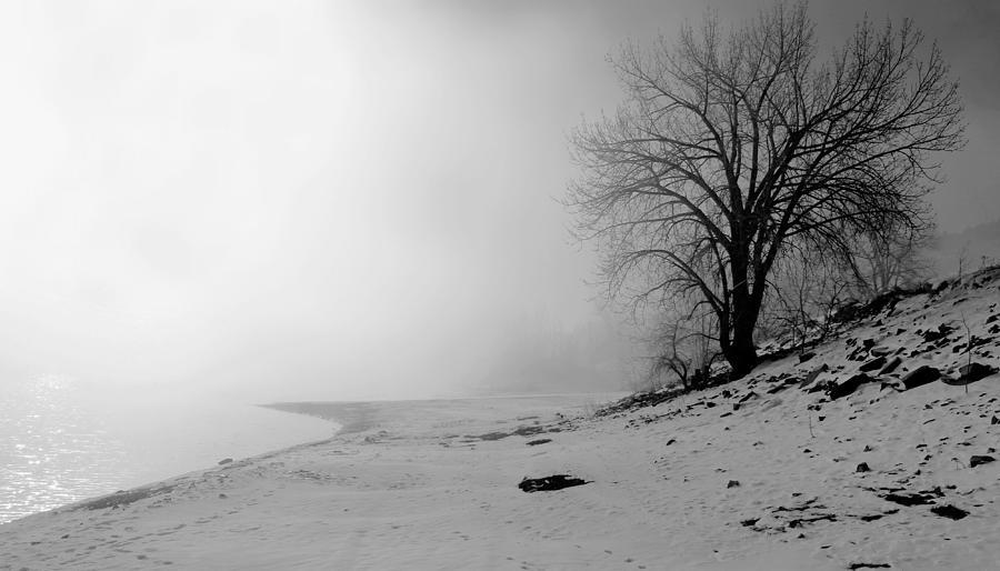 Landscape Photograph - Stillness by Donna Duckworth