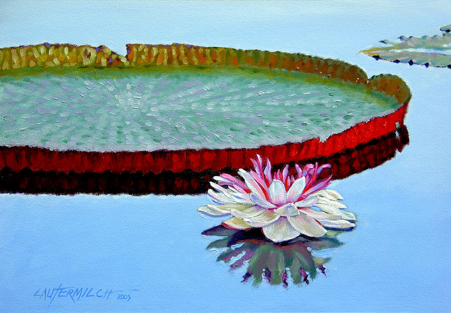 Water Lily Painting - Stillness by John Lautermilch