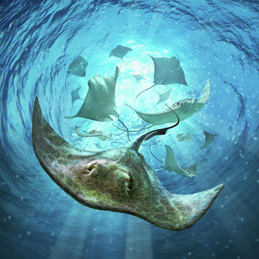Stingrays Digital Art - Sting Rays by Jerry LoFaro