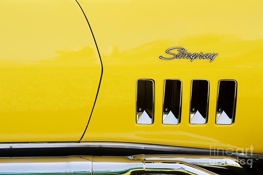 1972 Photograph - Stingray Yellow  by Tim Gainey