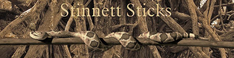 Stinnett Studio Photograph - Stinnett Sticks Logo by Mike Stinnett