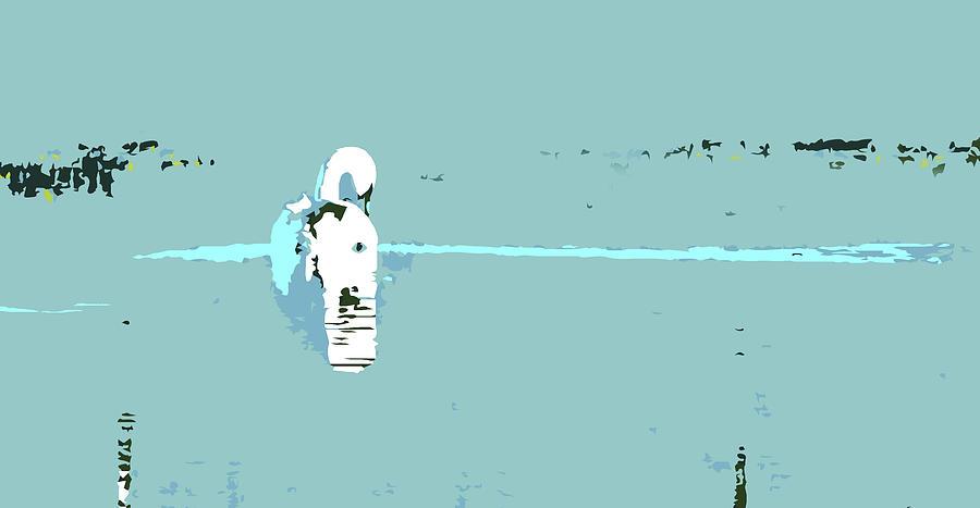 Swan by Mary Castellan