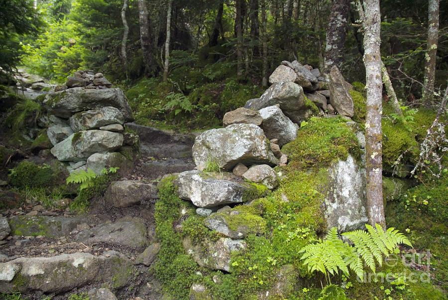 Stonewall Photograph - Stone Gate - Edmands Path - White Mountains New Hampshire  by Erin Paul Donovan