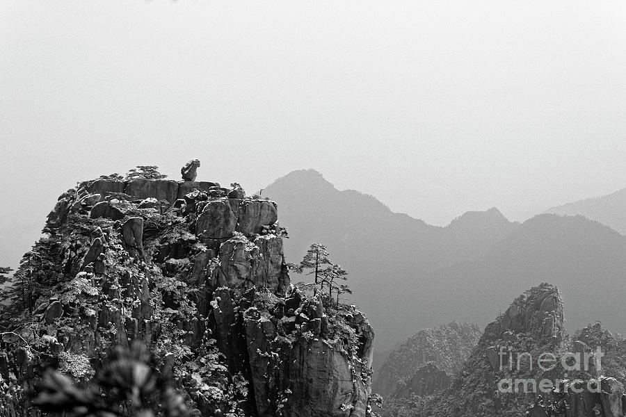 Stone Monkey Gazing over Sea of Clouds by James L Davidson