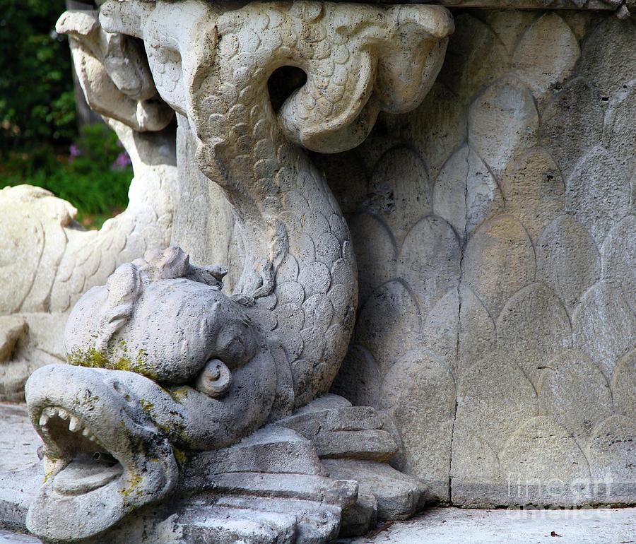 Stone Serpent Photograph