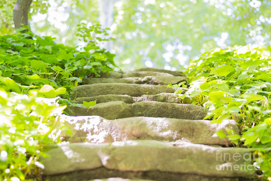 Stone Photograph - Stone Stairs by Stefano Piccini