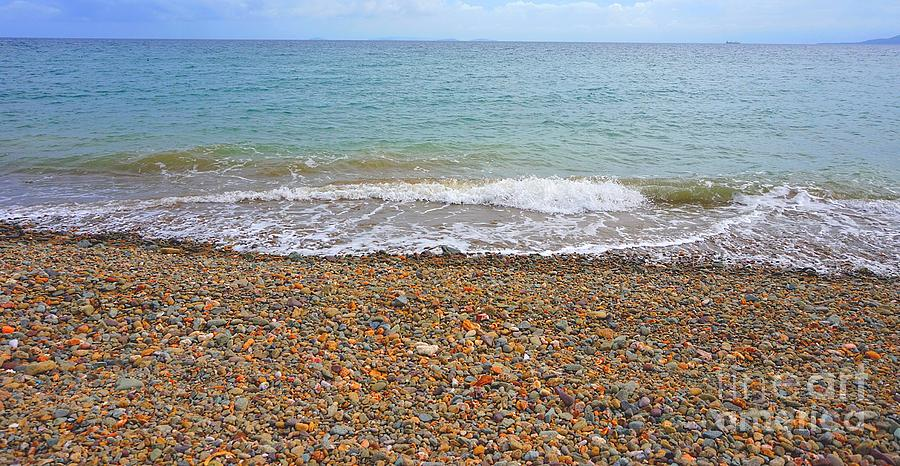 Stone Photograph - Stony Beach by Christopher Shellhammer