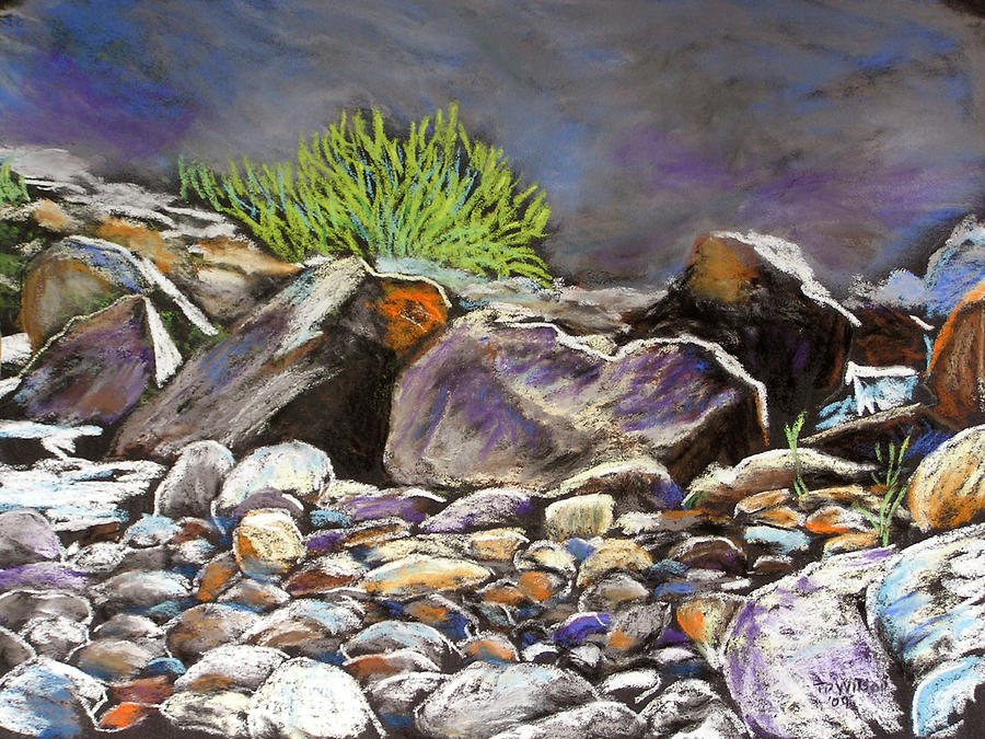 Stony Creek study 1 by TD Wilson