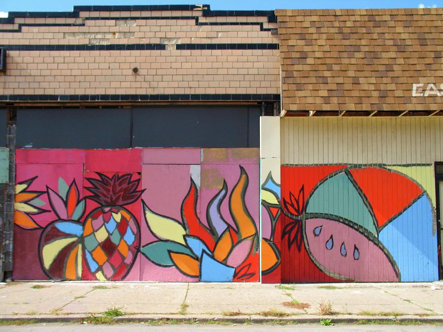 Detroit Photograph - Store Front Art by David Kyte