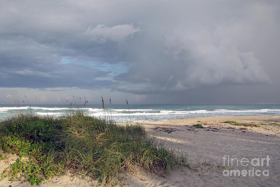 Beach Scene Pyrography - Storm Beyond The Sea Oats by Richard Nickson