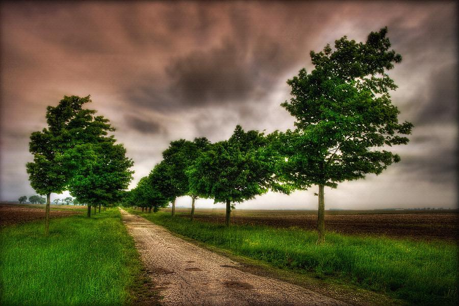 Storm Path by David Kuhn