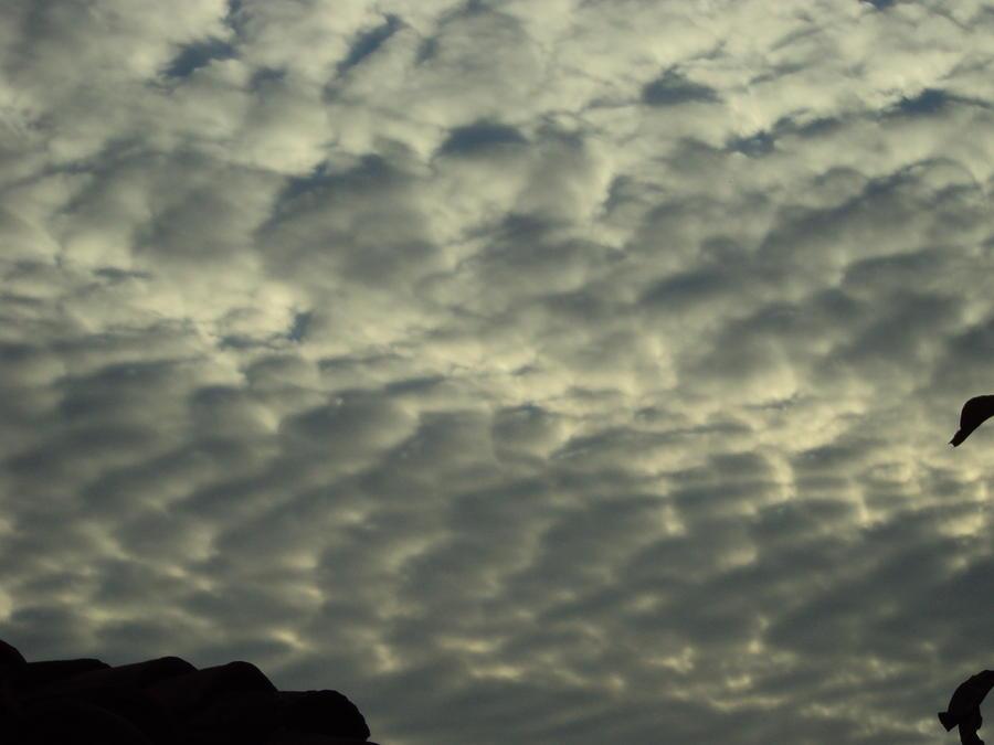 Landscape Photograph - Storm Sky by David Du Hempsey