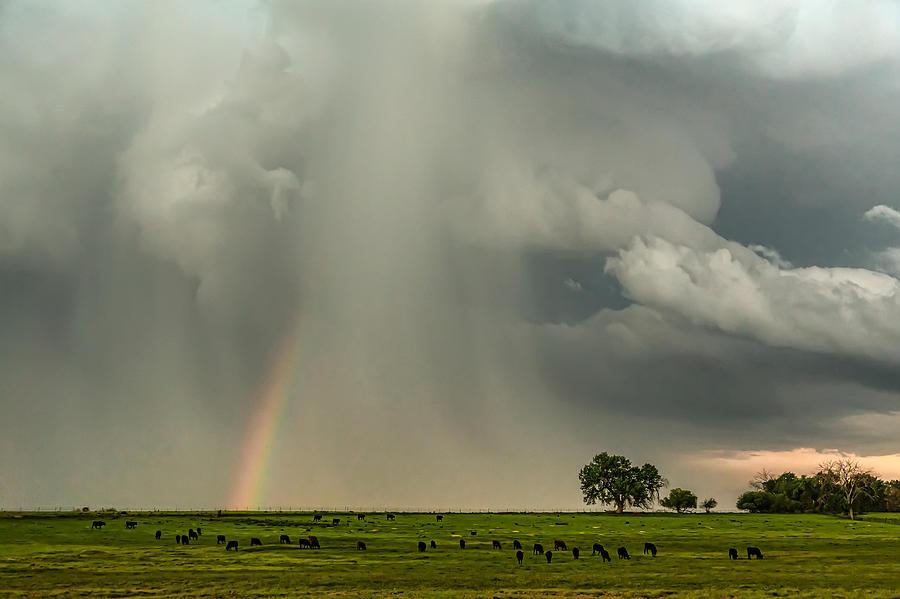 Stormin Rainbow Photograph
