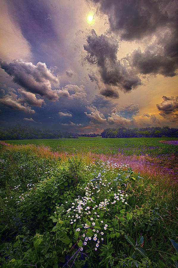Season Photograph - Storms A Comin by Phil Koch