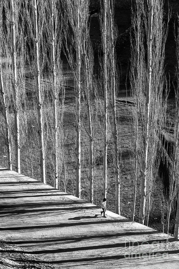 Black And White Photograph - Story Of Light by Awais Yaqub