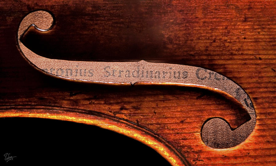 Strad Photograph - Stradivarius Label by Endre Balogh