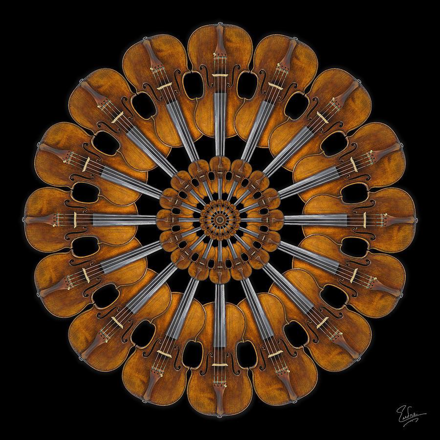 Strad Photograph - Stradivarius Rosette by Endre Balogh