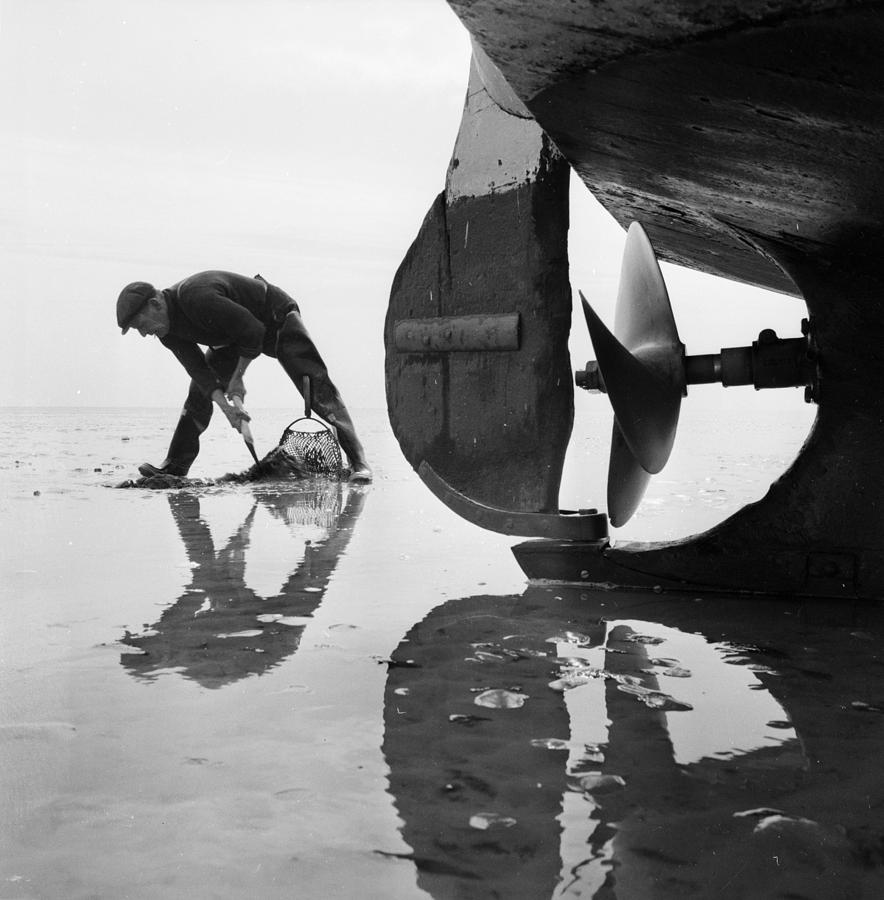 Adult Photograph - Stranded by John Drysdale