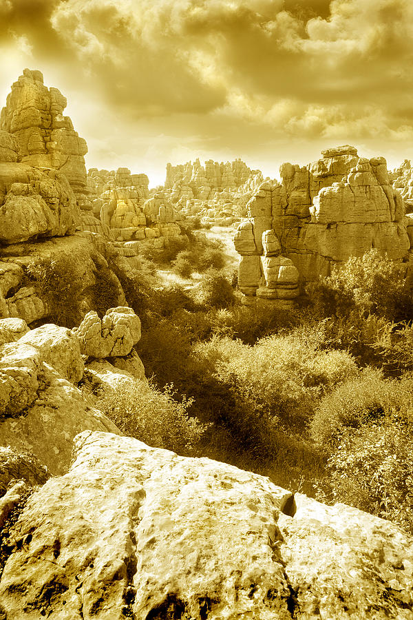 Rock Photograph - Strange Rock Formations At El Torcal Near Antequera Spain by Mal Bray