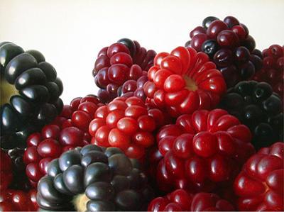 Fruits Painting - Strawberries by Antonio Castello Avilleira