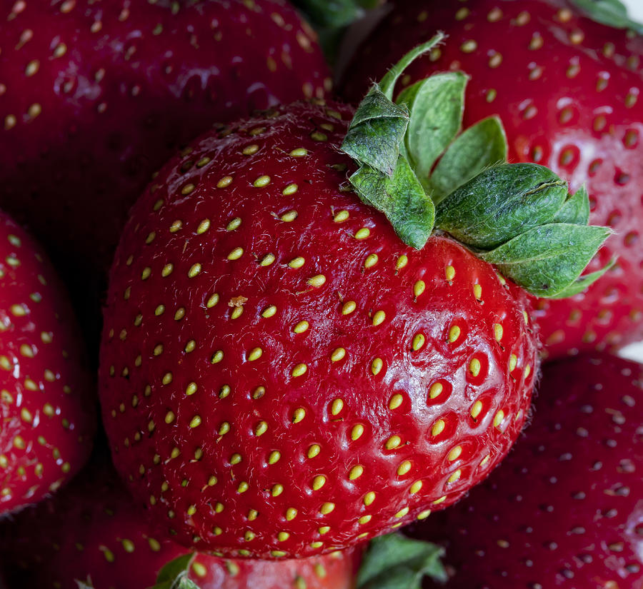 Strawberry Photograph - Strawberry 3 by Robert Ullmann