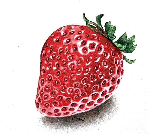 Food Drawing - Strawberry Bite by Janet Moss
