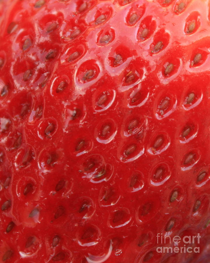 Strawberry Photograph - Strawberry Closeup by Carol Groenen