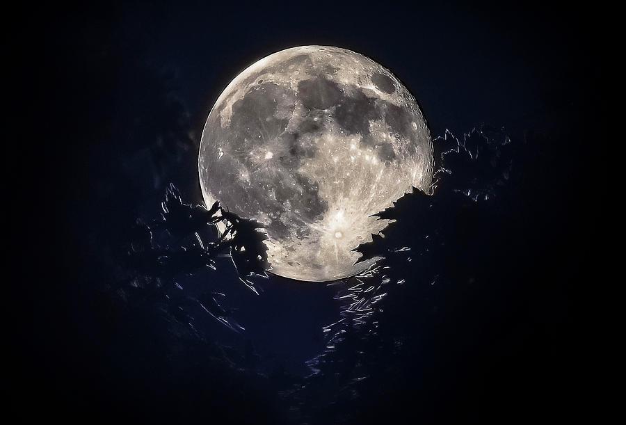 Full Moon Photograph - Strawberry Moon by Garett Gabriel