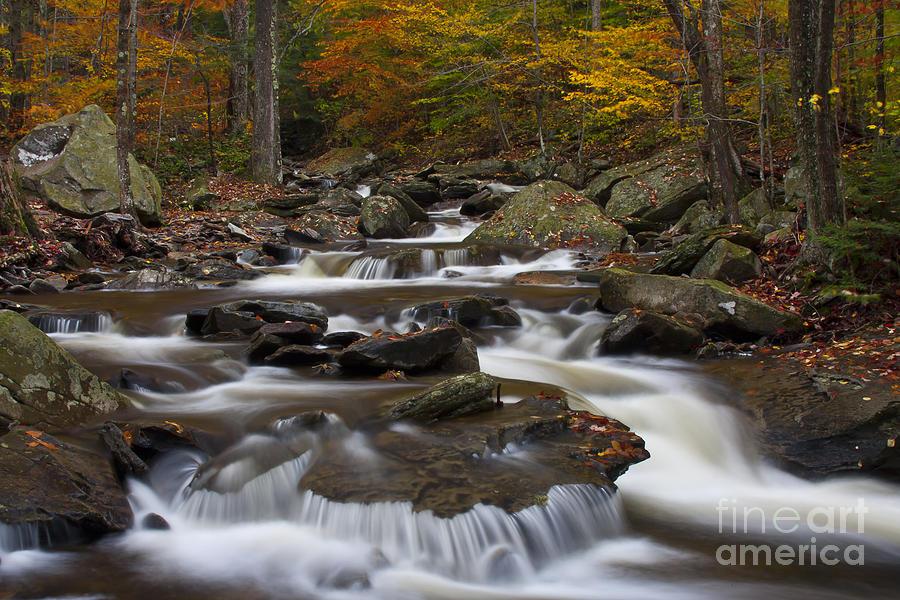 Autumn Photograph - Stream At Ricketts Glen by Robert Wirth