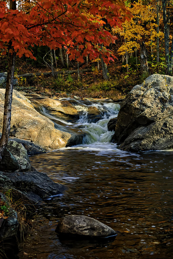 Autumn Photograph - Stream In Autumn No.17 by Mark Myhaver