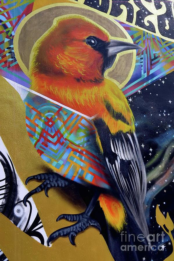 Street Art by Teresa Zieba