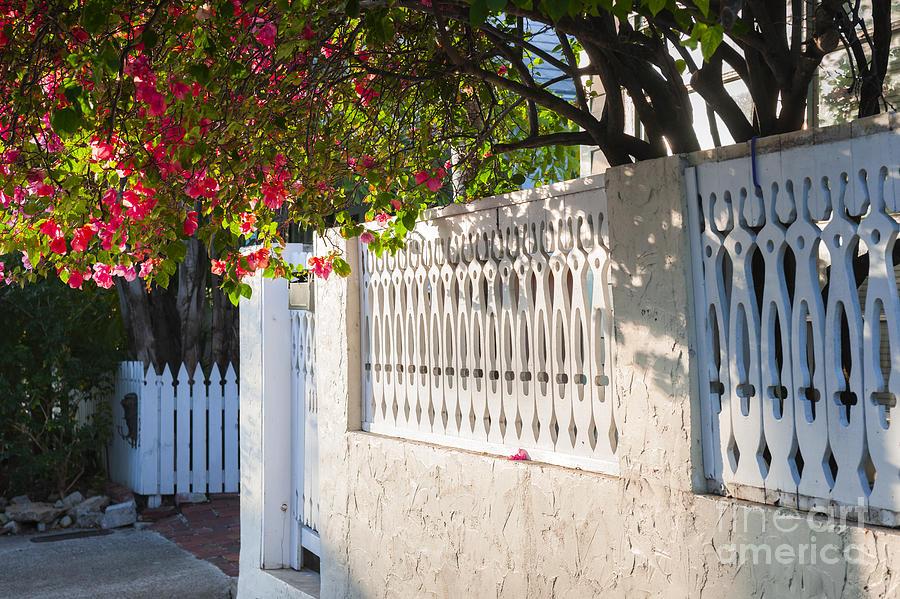 Street Photograph - Street In Key West by Elena Elisseeva