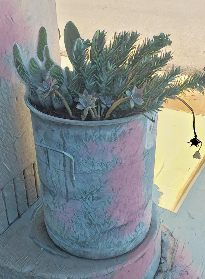 Texas Digital Art - Street Planter by Wendy Biro-Pollard