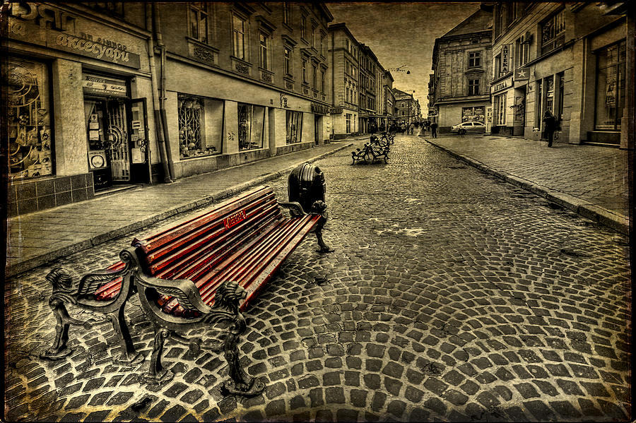Bench Photograph - Street Seat by Evelina Kremsdorf