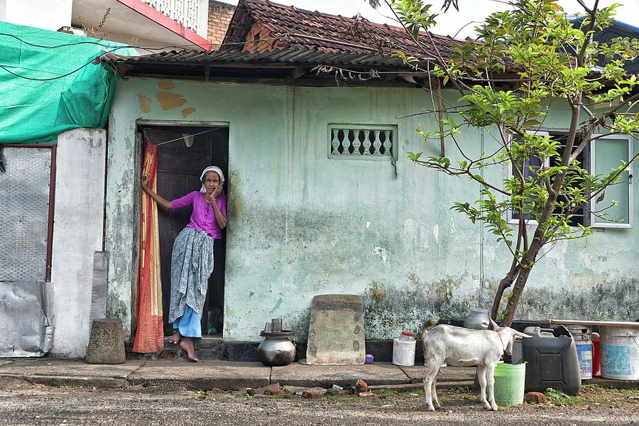 Streets of Kochi by Marion Galt