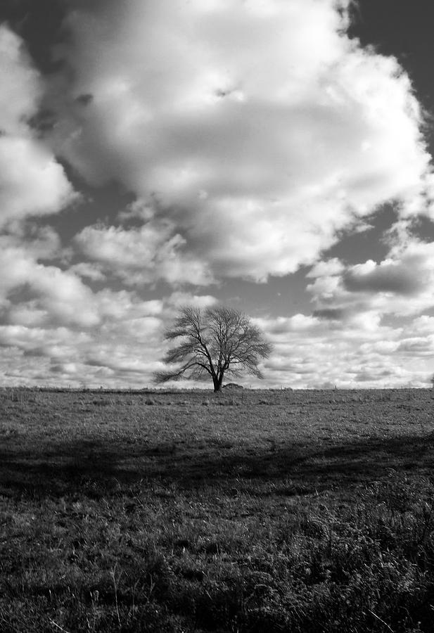Clouds Photograph - Strength II by Mark Wiley