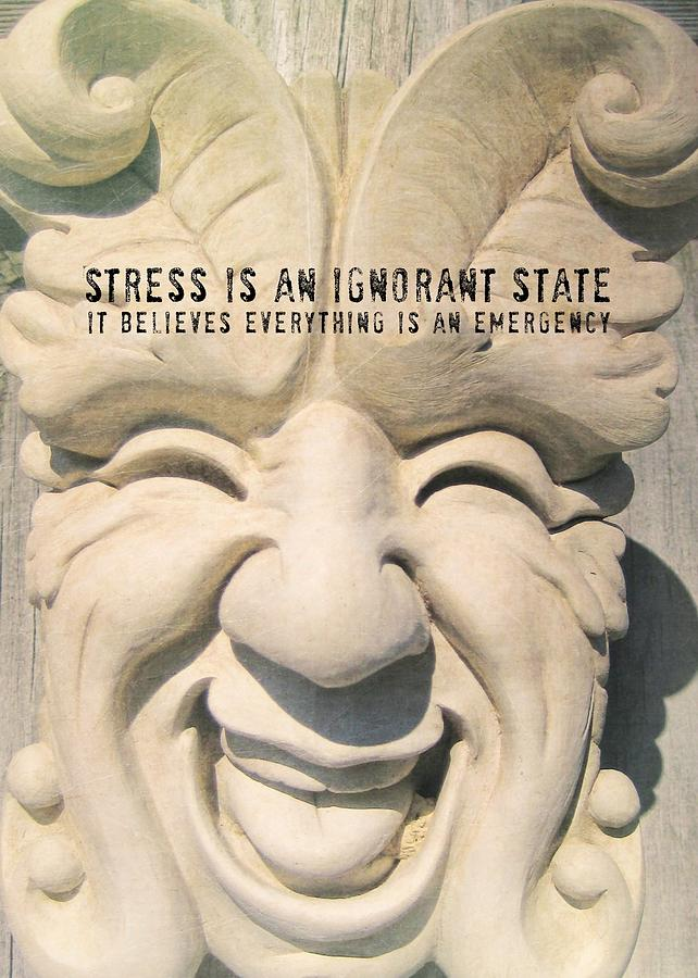 Smile Photograph - Stress Relief Quote by JAMART Photography