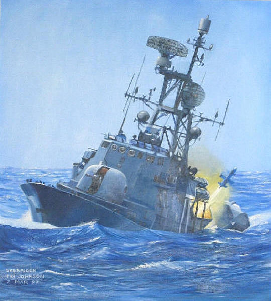 South African Navy Painting - Strike Craft by Tim Johnson