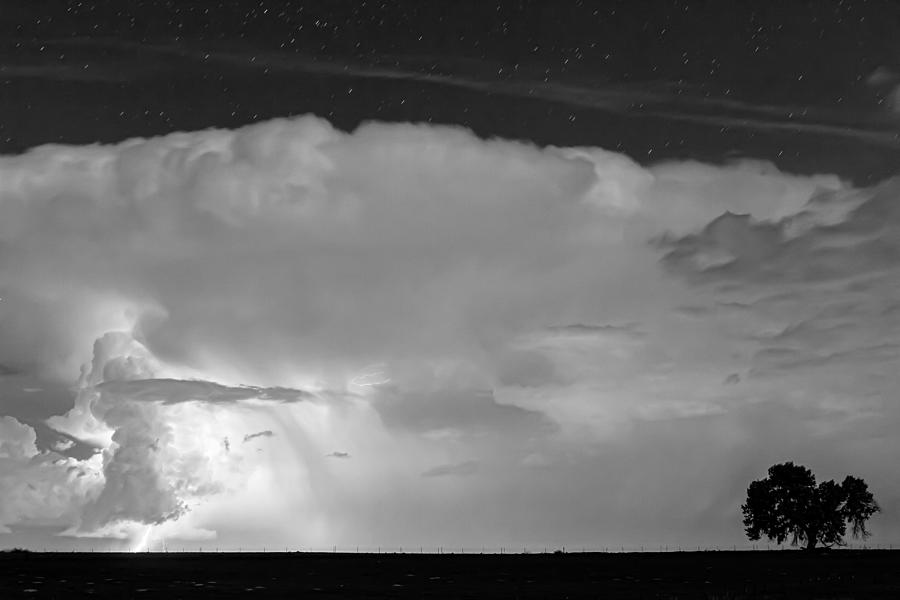 Striking Distance In Black And White Photograph