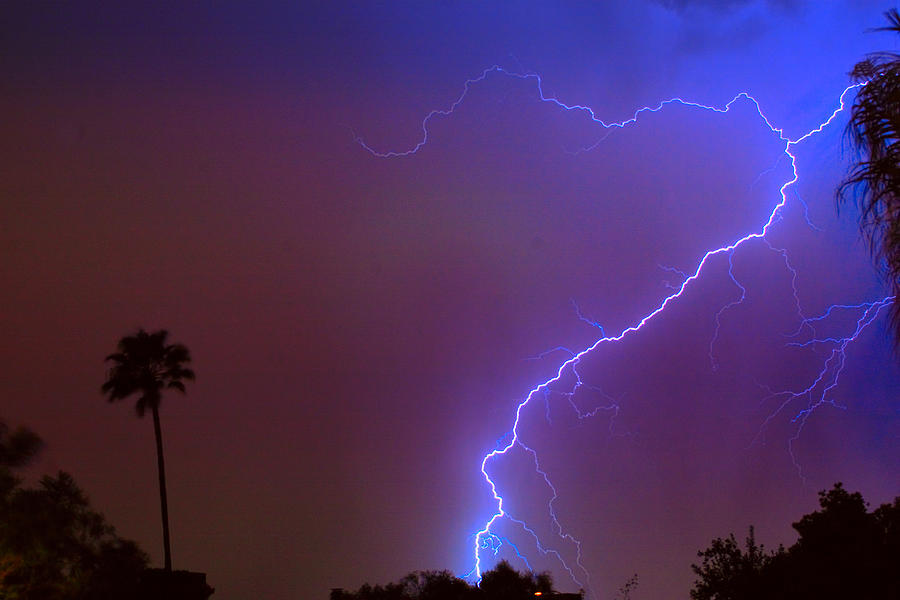 Lightning Photograph - Striking Out by James BO  Insogna