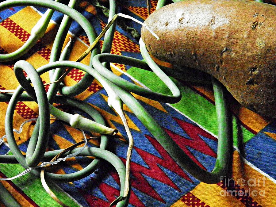 String Beans Photograph - String Beans And Yam by Sarah Loft