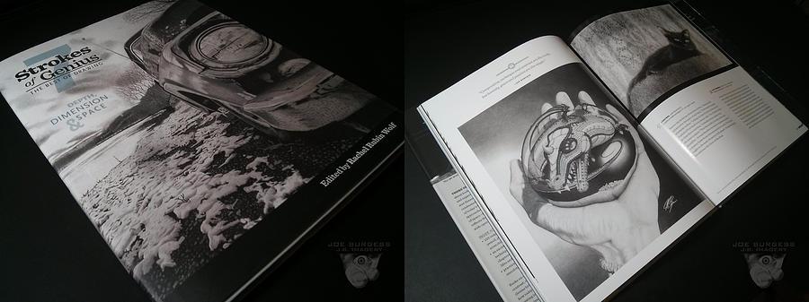Strokes Of Genius Photograph - Strokes Of Genius 7 by Joe Burgess