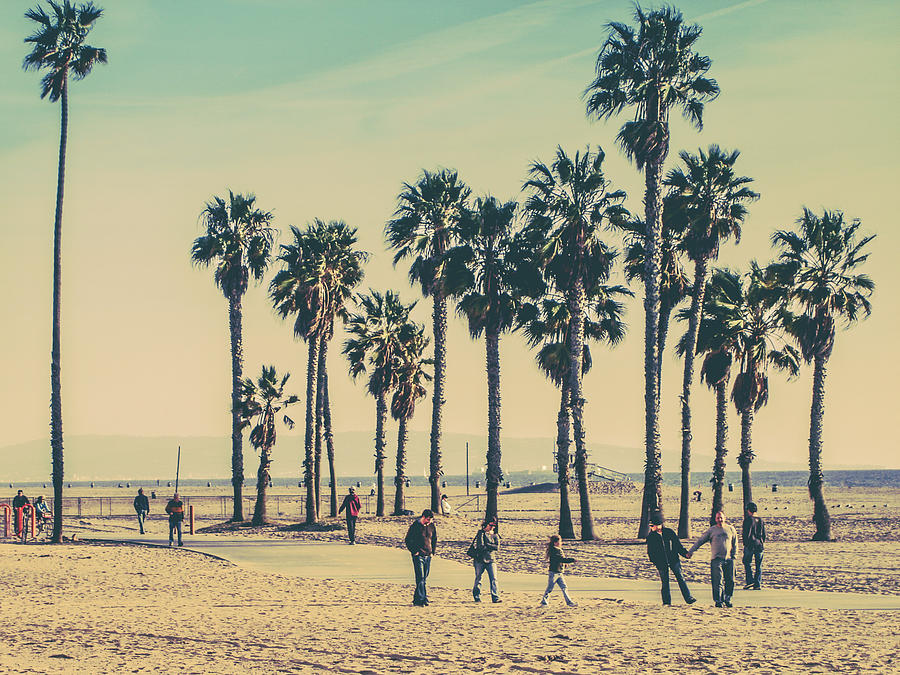 Stroll Down Venice Beach Photograph