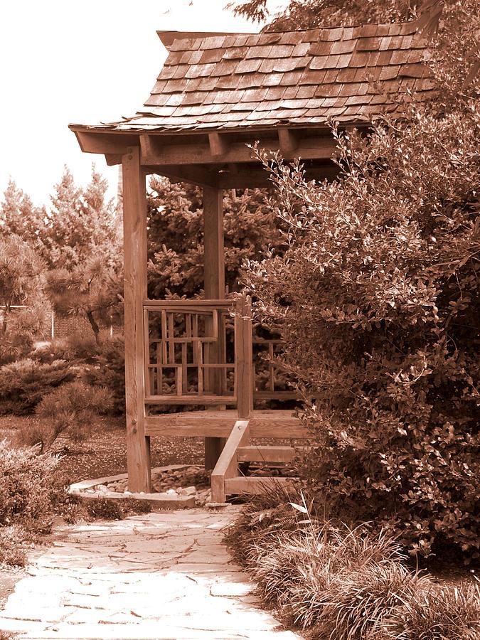Sepia Photograph - Stroll Garden 2 by Audrey Venute