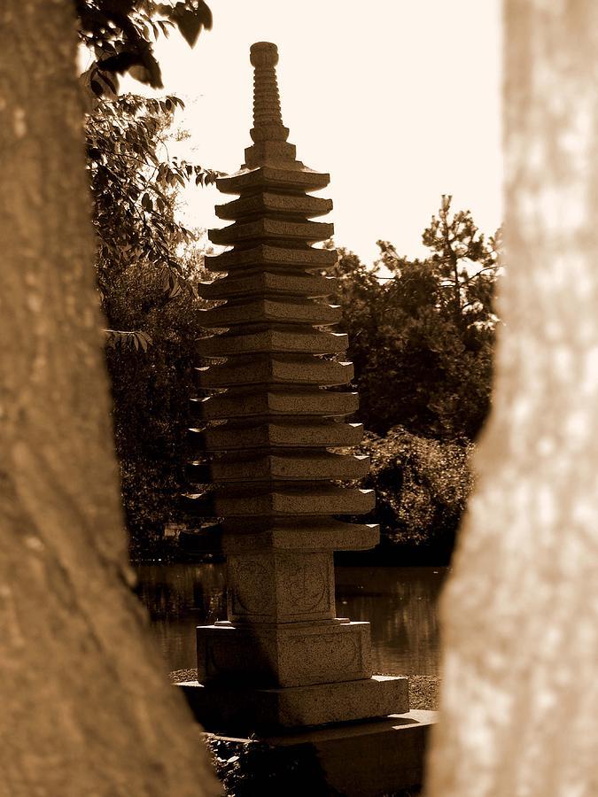 Sepia Photograph - Stroll Garden 3 by Audrey Venute