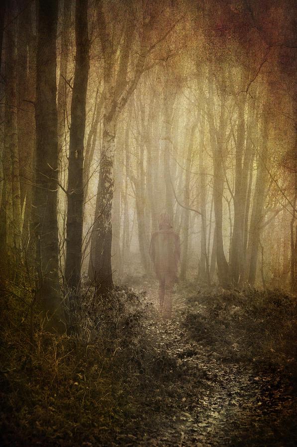 Toned Photograph - Stroll Through My Mind by Meirion Matthias