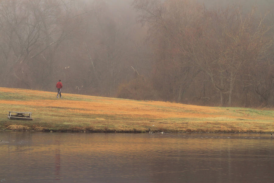 Fog Photograph - Strolling Thru The Park by Karol Livote