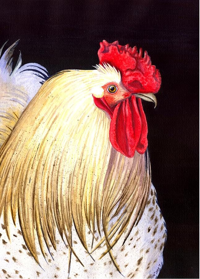 Rooster Painting - Studdley by Catherine G McElroy